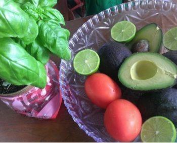 guacamole ingredients the empress woman