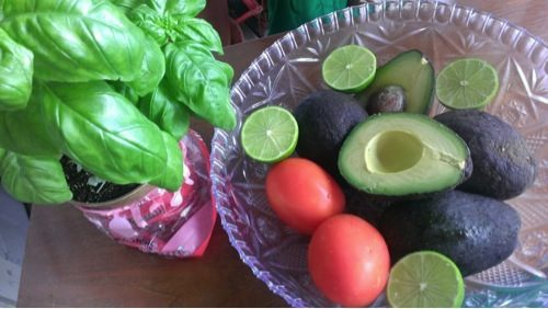 guacamole ingredients the empress woman